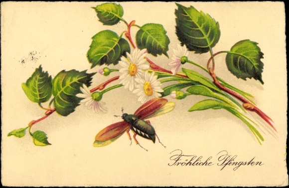 Ak Glückwunsch Pfingsten, Maikäfer, Zweige, Blumen