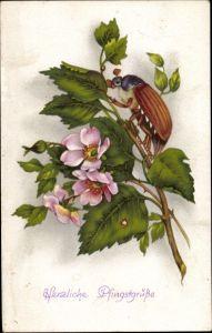 Ak Glückwunsch Pfingsten, Maikäfer auf einem Zweig