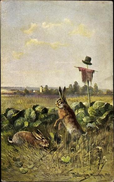 Künstler Ak Müller, jun., Hasen auf einem Feld mit Salatköpfen,Vogelscheuche