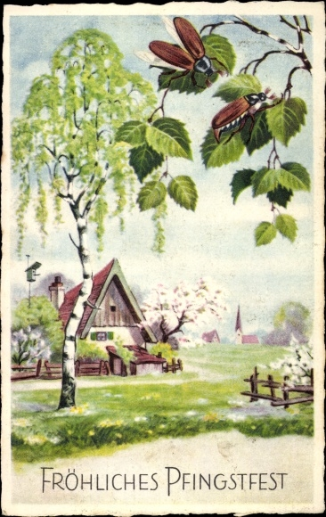 Ak Glückwunsch Pfingsten, Maikäfer, Bäume, Haus