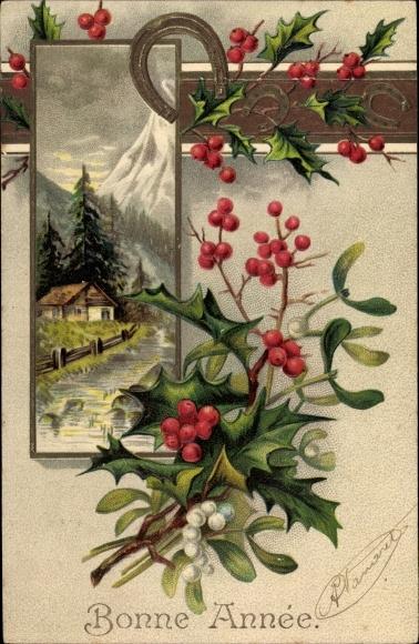 Präge Passepartout Ak Glückwunsch Neujahr, Hufeisen, Stachelpalme, Misteln, Berglandschaft