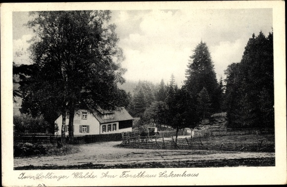 Ak Dassel, Im Sollinger Walde, Am Forsthaus Lakenhaus 0