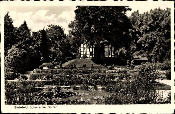 Ak Bielefeld in Nordrhein Westfalen, Botanischer Garten 0
