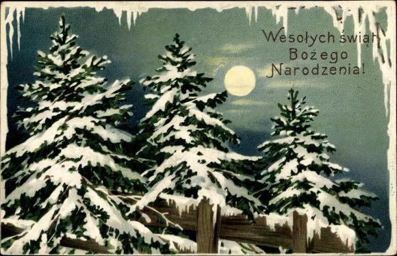 Präge Ak Frohe Weihnachten, Bozego Narodzenia, Tannenbäume, Mond 0