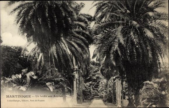 Ak Martinique, un jardin aux Antilles, Allée 0