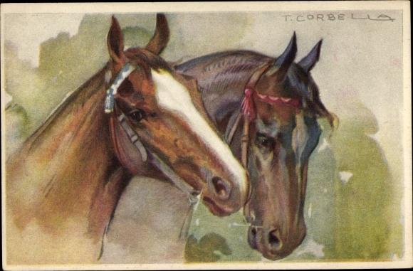 Künstler Ak Corbella, T., Pferde mit Zaumzeug, Kopfstudie
