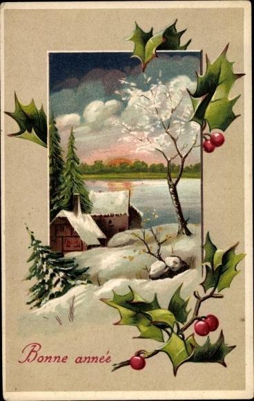 Präge Passepartout Ak Glückwunsch Neujahr, Stachelpalme, Schneelandschaft