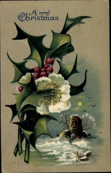 Präge Ak Frohe Weihnachten, Stachelpalme, Ruine bei Mondschein, Schneelandschaft