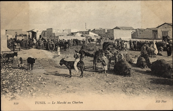Ak Tunis Tunesien, Le Marché au Charbon, Kamele, Esel