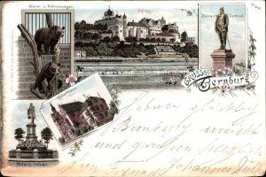 Litho Bernburg an der Saale, Schloss, Bären im Schlosszwinger, Bismarckdenkmal, Kreishaus