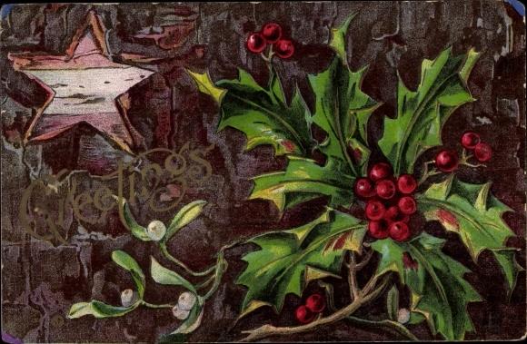 Präge Ak Frohe Weihnachten, Stachelpalme, Misteln, Zweig, Stern