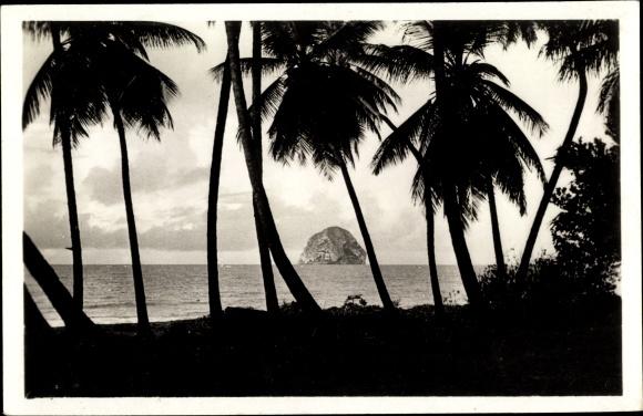Ak Milon Fort de France Martinique, Le rocher du Diamant, Felsen im Meer, Palmen