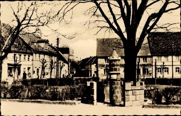 Ak Uebigau Wahrenbrück Brandenburg, Markt, Stadtwappenbrunnen