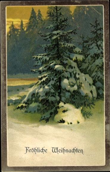 Präge Litho Glückwunsch Weihnachten, Schneebedeckter Tannenbaum