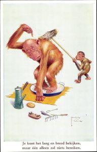Künstler Ak Wood, Lawson, Schimpanse schrubbt Rücken von großem Affen