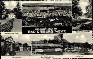 Ak Bad Driburg Nordrhein Westfalen, Panorama vom Ort, Eingang zum Bad, Partie im Kurpark, Trinkhalle