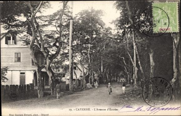 Ak Cayenne Französisch Guayana, L'Avenue d'Estrees
