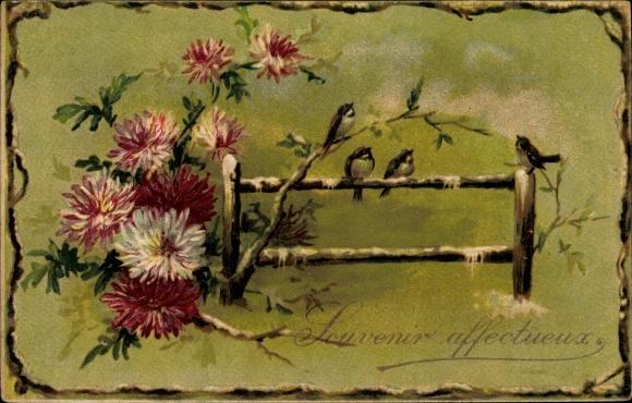 Präge Ak Souvenir affectueux, Astern, Vögel auf einem Zaun