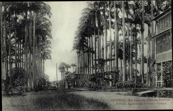 Ak Cayenne Französisch Guayana, Rue Lalouette, Place des Palmistes