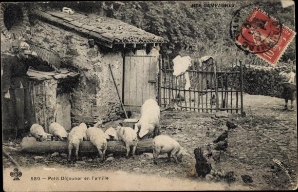 Ak Nos Campagnes, Petit Déjeunes en Famille, Schweine