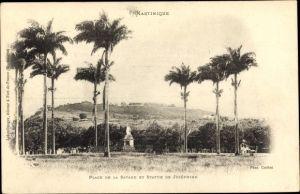 Ak Fort de France Martinique, Place de la Savane, Statue de Josephine