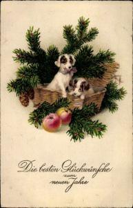Ak Glückwunsch Neujahr, Hundekorb, Tannenzweige, Äpfel
