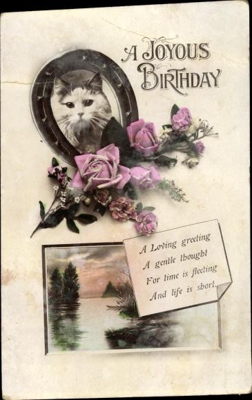 Ak Glückwunsch Geburtstag, Hauskatze, Hufeisen, Rosen