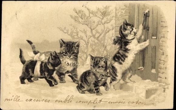 Päge Litho Hauskatzen, Schnee, Haustür