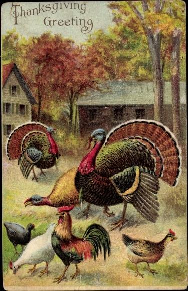 Präge Ak Glückwunsch Thanksgiving, Truthähne, Hühner