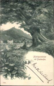 Ak Königswinter am Rhein, Blick auf Königswinter mit Drachenfels