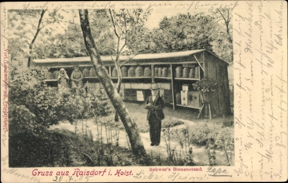 Ak Raisdorf Schwentinental in Schleswig Holstein, Rohwer's Bienenstand, Imker, Bienenstöcke