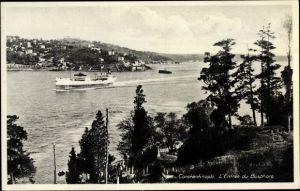 Ak Istanbul Konstantinopel Türkei, L'Entrée du Bosphore