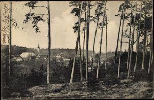 Ak Magdeburgerforth Möckern im Jerichower Land, Panorama vom Ort