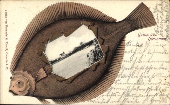 Präge Fisch Passepartout Ak Dziwnów Dievenow in Pommern, Uferpartie, Gebäude, Flunder