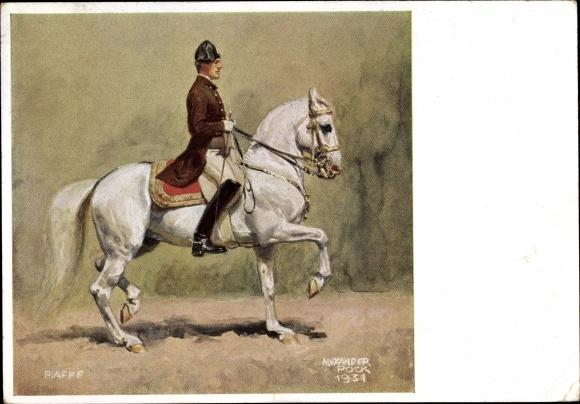 Künstler Ak Pock, Alexander, Piaffe, Spanische Reitschule, Dressurreiten, Pferd