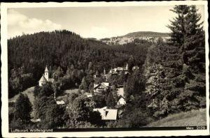 Ak Międzygórze Wölfelsgrund Schlesien, Panorama vom Ort