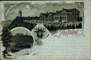 Mondschein Litho Goslar in Niedersachsen, Steinberg, Aussichtsturm, Hirsch, Panorama vom Ort