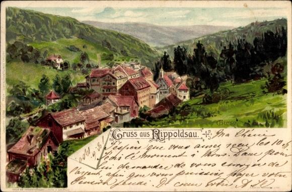 Künstler Litho Biese, C., Bad Rippoldsau Schapbach im Schwarzwald, Gesamtansicht