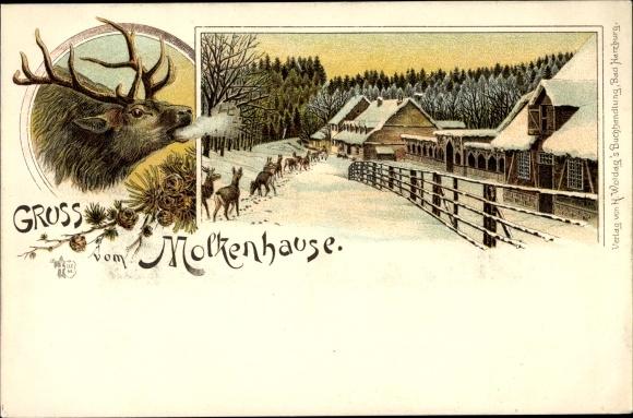 Litho Bad Harzburg in Niedersachsen, Partie am Molkenhause im Winter, Hirsche
