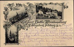 Ak Freiburg im Breisgau, Panorama von Dattler's Weinwirtschaft aus, Münster, Gesamtansicht