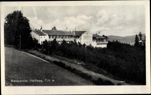 Ak Hochegg Niederösterreich, Waldpension