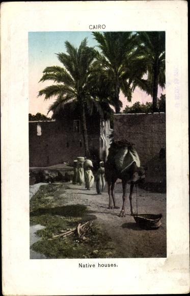 Ak Cairo Kairo Ägypten, Native houses, camel