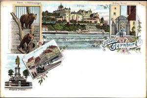 Litho Bernburg an der Saale, Bären im Schlosszwinger, Schloss, Portal, Neue Brücke, Wolfgang Denkmal