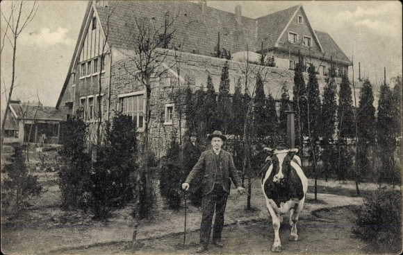 Ak Wanne Herne im Ruhrgebiet, Milchkur Anstalt Schweizerhof Flora, Inh. W. Marzina, Kuh