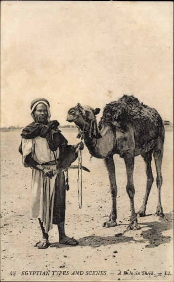 Ak Ägypten, Egyptian Types and Scenes, A Bedouin Sheik, Beduine mit Kamel