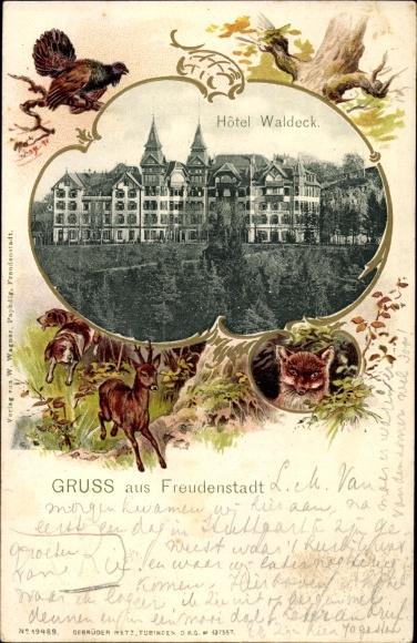 Präge Passepartout Ak Freudenstadt im Nordschwarzwald,  Hotel Waldeck, Reh und Hunde, Auerhahn