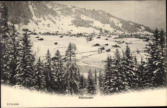 Ak Adelboden Kt. Bern Schweiz, Panorama vom Ort, Tannenwald, Schneelandschaft