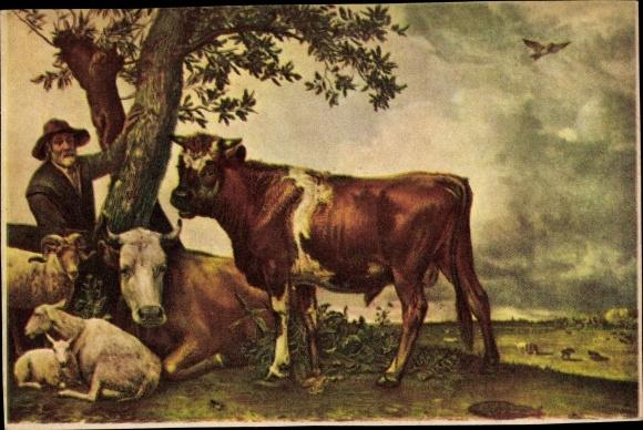 Künstler Ak Potter, Paulus, De Jonge Stier, Rinderhirte, Kühe, Schafe