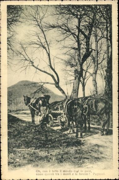 Ak Bäuerin mit Pferdegespann