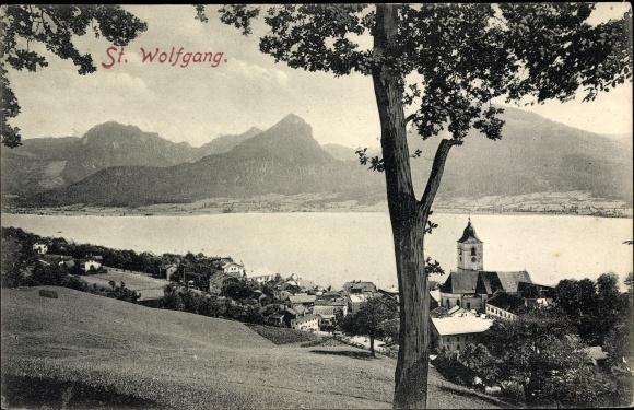 Ak St. Wolfgang im Salzkammergut in Oberösterreich, Panorama vom Ort